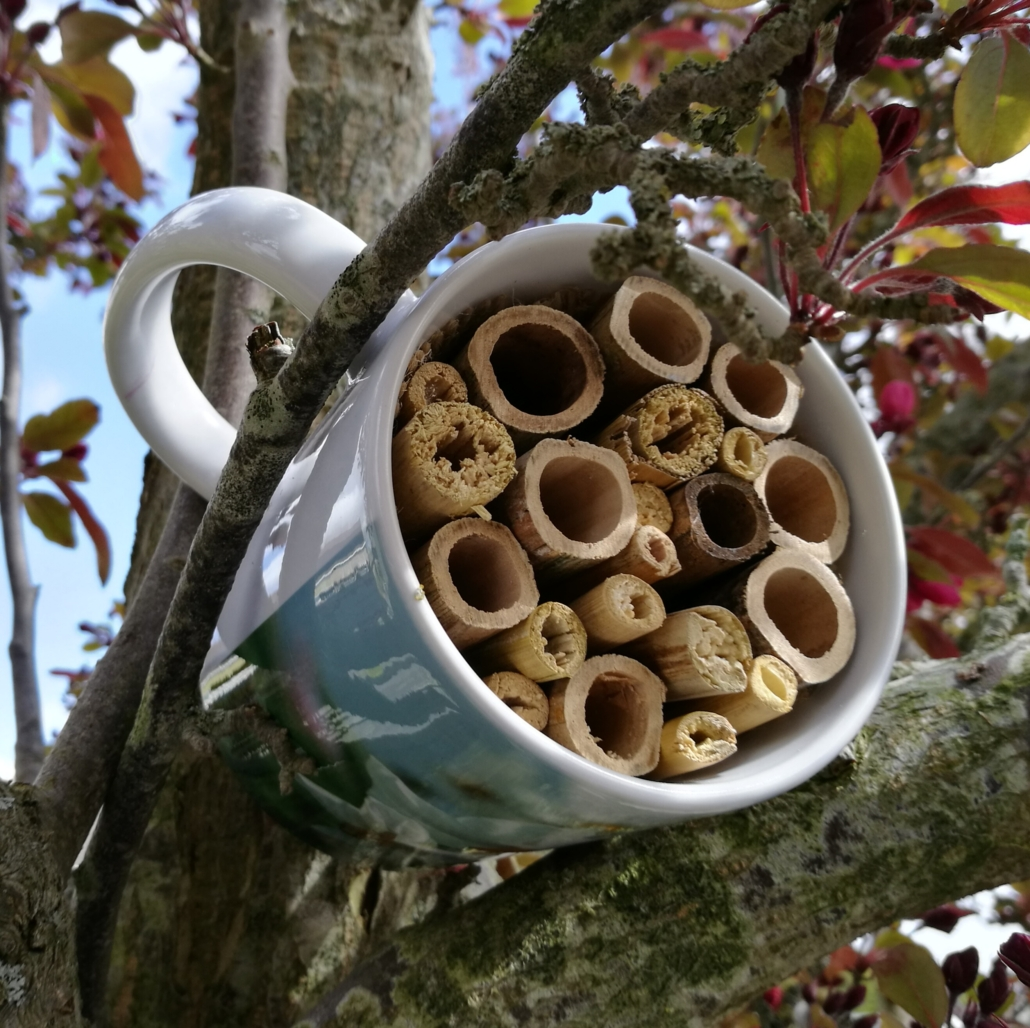 Bijenhotel maken